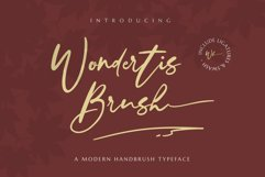 Wondertis Brush Product Image 1