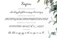 Sofia script Product Image 5