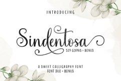 Sindentosa Font Duo & Bonus Product Image 1