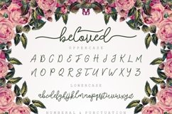 Web Font Beloved Script Product Image 2