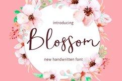 Web Font Blossom Product Image 1