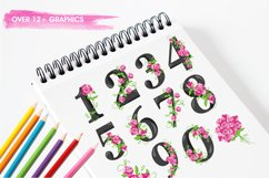 Floral Numbers graphics and illustrations Product Image 3