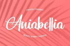 Aniabellia   Beauty Script Typeface Product Image 1