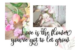 Lovin Florist Product Image 5