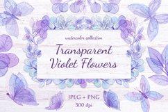 Transparent Violet Flowers Product Image 1