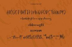 Web Font Classical - Signature Script Font Product Image 4