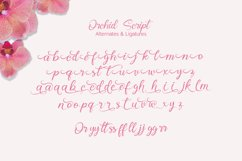 Orchid Script Product Image 6