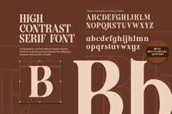 Ground Castle - High Contrast Serif Product Image 2