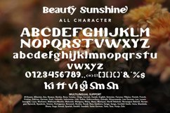 Beauty Sunshine - Summer Display Product Image 3
