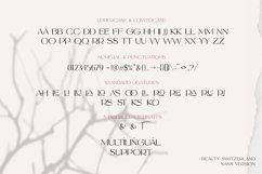 Beauty Switzerland Business Font Product Image 3