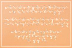Beauty Yellow - A Luxury Web Font Product Image 6