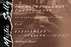 Mister Sally-Beautiful Handwritten BrushFont Product Image 5