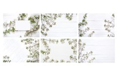 6 Spring Stock backgrounds in high resolution Product Image 2