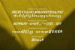 Beckett - Beauty & Stylish Script Font Product Image 3