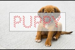 Puppy Paw - Dog Font Product Image 3