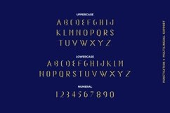 Web Font Belagie Font Product Image 4