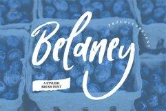 Web Font Belaney - A Stylish Brush Font Product Image 1