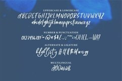 Web Font Belaney - A Stylish Brush Font Product Image 3