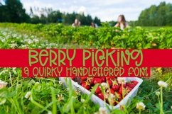 Web Font Berry Picking - A Quirky Handlettered Font Product Image 1