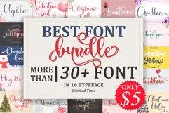 The Best Font Bundle  WEB FONTS Product Image 1