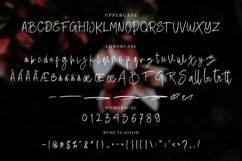 Battie Sellie - Script Font Product Image 3