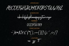 Styniar Font Product Image 6