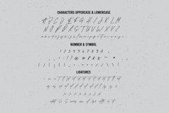 Socialite Signature Font Product Image 8