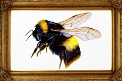 Bumble Bee Clipart Watercolor SVG PNG PDF JPEG Product Image 2