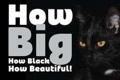 Blackye Product Image 2
