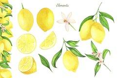 Watercolor Lemon Clipart, Lemon Frame, Lemon Wreath, Summer Product Image 5