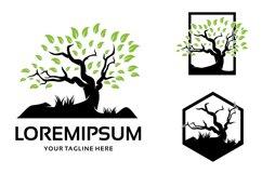 Tree Logo Template Design Inspiration Product Image 1