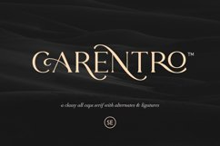 Carentro - Classy Serif Product Image 2