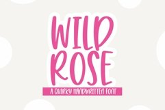 Web Font Wild Rose - A Quirky Handwritten Font Product Image 1