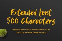 Sanös Extended Script Font Product Image 3