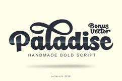 Paladise Font & Extras Product Image 1
