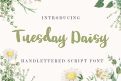 Tuesday Daisy - a beauty script font Product Image 1