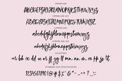 Bold Brush Font  Bonus Font Product Image 5