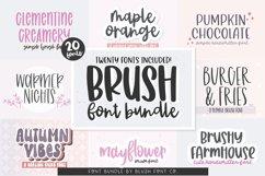 BRUSH FONT BUNDLE - 20 FONTS - By Blush Font Co. Product Image 1