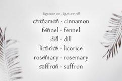 Herb - floral serif ligature font Product Image 2