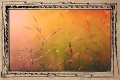 Doodle Frames & Photoshop Brushes - Arty Farty Frames Product Image 5