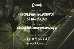 Creasi Script Product Image 2