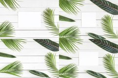 Palm Dreams Bundle Mockups Product Image 2