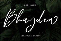 Web Font Bhayden - A Beauty Script Font Product Image 1