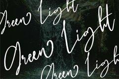 Web Font Bhayden - A Beauty Script Font Product Image 6