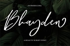 Bhayden - A Beauty Script Font Product Image 1