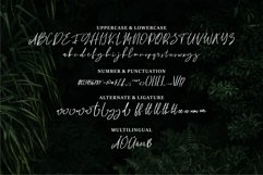 Bhayden - A Beauty Script Font Product Image 4