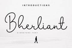 Bherliant Product Image 1