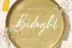 Web Font Bidoght Font Product Image 1