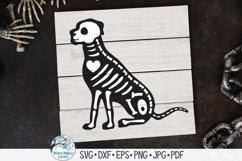 Animal Skeleton SVG Bundle   Halloween SVGs Product Image 2