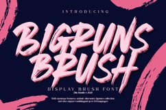 Bigruns Brush Product Image 1
